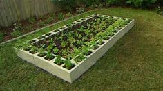 Block Cinder Gardening Garden Beds | Raised Bed Garden Ideas, Raised Garden Bed Images and Growing Tips