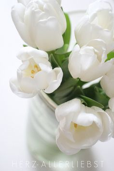 Tulpen by herz-allerliebst, via Flickr