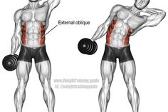 Dumbbell side bend exercise