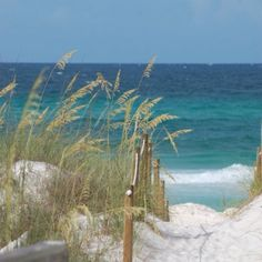 A picture I took from our back yard in Panama City, Florida! Such a beautiful beach! Panama City Beach Florida, Panama City Panama, Florida Beaches, Cottages By The Sea, Beach Cottages, Ocean Beach, Beach Grass, I Love The Beach, Am Meer