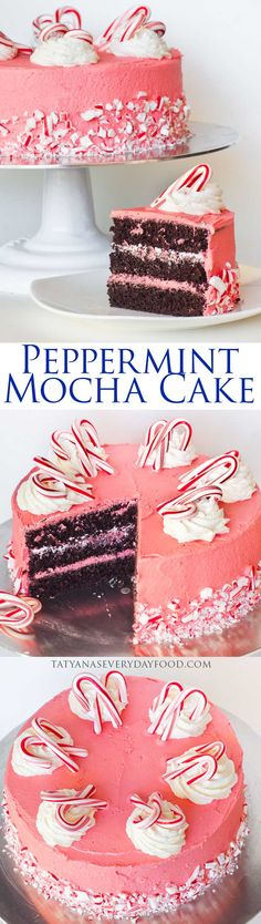 Peppermint Mocha Cake - perfect for the holidays! Tatyana's Everyday Food