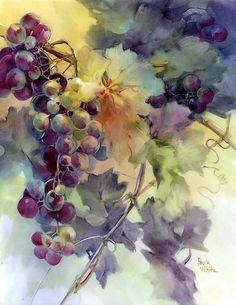 "Paula White, porcelain artist.  ""Early Morning Grapes"" .  Paula is my favorite grape artist."