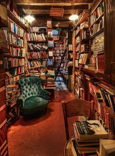 I have always wanted a library in my future home. I love the cozy feel this picture has.