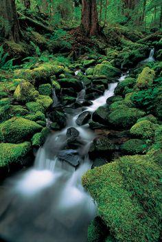 Ríos, cascadas