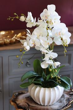 Potted Orchid Centerpiece, Orchid Flower Arrangements, Orchid Planters, Flower Arrangement Designs, Home Flowers, Flowers Nature, Beautiful Flowers, Floral Wallpaper Phone, Flower Wallpaper
