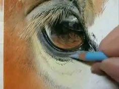by Roberta Pintando um dia de demonstração do olho do cavalo