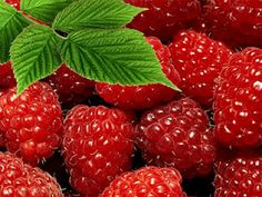 Easy to make yogurt and raspberry cake http://cookinglily123.blogspot.fr/2012/04/yogurt-and-raspberry-cake.html