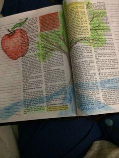 Bible Journaling Garden of Eden