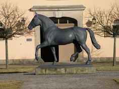 P3010590, Horse Statue - The State Stud of Moritzburg | by guenter.huth