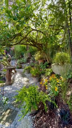 Garden Yard Ideas, Garden Art, Garden Design, Backyard Patio, Backyard Landscaping, Beautiful Gardens, Magical Gardens, Woodland Garden, Shade Garden