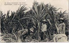Ancienne Martinique