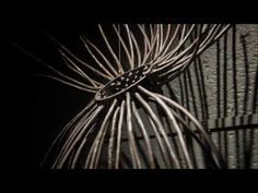 Izanne Wiid and Sybrand Wiechers are two Pretoria sculptors who combine their talents to bring a sculpture installation to the closed space of the Black Box . Pretoria, Cage, Abstract Art, Places To Visit, Sculpture, Sculpting, Sculptures, Carving, Statue