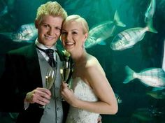 Get married in an Aquarium like the Two Oceans Aquarium in Cape Town. http://www.cape-town-guide.com/two-oceans-aquarium-weddings.html www.superiorsalesandrentals.co.za