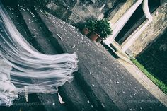 Wedding by stefanoholden
