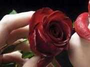 Ez az egyetlen női csillagjegy, aki bárkinek a szívét képes elrabolni, még azét is, aki boldog kapcsolatban él!