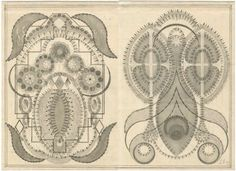 Louise Despont's delicate geometric configurations drawn onto vintage ledger papers reveal a personal mytho-hermetic dictionary of esoteric cosmologies and knowledge systems.    The drawings are composed of multiple lines, circles, triangles and hexagons that combine to build architectural constellations, hieroglyphic matrices and crystalline maps of occult correspondences.