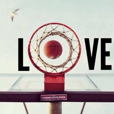 Sport Basketball Volleyball New Ideas Sport Basketball, Basketball Tumblr, Basketball Tricks, Basketball Pictures, Love And Basketball, Basketball Players, Basketball Court, Basketball Stuff, Basketball Birthday