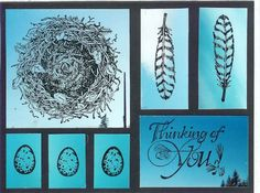 Soft As A Feather Photo Stamping by gottastamp1 - Cards and Paper Crafts at Splitcoaststampers