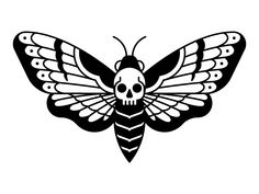 Moth Drawing, Deaths Head Moth, Hawk Moth, Graphic Design Inspiration, Drawings, Insects, Bee, Google Search, Animals