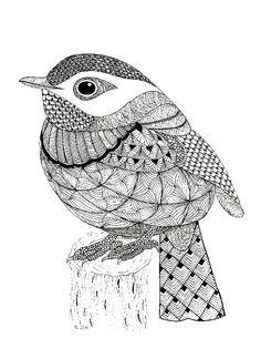 Tangled Little Flycatcher – Zentangle Birds. Design Ideas Inspirations - Tangled Little Flycatcher – Zentangle Birds Zentangle Drawings, Bird Drawings, Zentangle Patterns, Doodle Drawings, Doodle Art, Zentangles, Zentangle Animal, Doodle Patterns, Zen Doodle