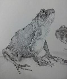 Pontilhismo frog...