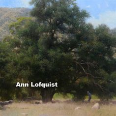 Marcia Burtt Gallery: Ann Lofquist booklet, $2.40 from MagCloud