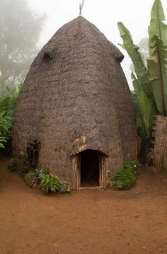 A traditional Dorze beehive homestead at Checha, Ethiopia, photo by Adam Lees.