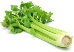 Wist je, dat bleekselderij vaak in films gebruikt wordt om het geluid van versplinterende botten na te bootsen? Zo zie je maar weer dat groenten vaak niet alleen maar gebruikt worden om magen te vullen. Het is een groente die zowel gekookt, rauw of als snack gegeten kan worden. Het eten van deze knapperige stengels werkt cholesterolverlagend, vermindert de kans op hoge bloeddruk en houdt de spieren gezond. www.gekop.com