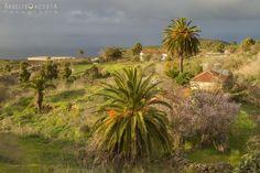 palmer@s El municipio más occidental de nuestra isla, Puntagorda.