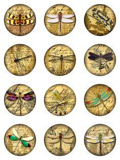 Libellule Ephemera felci Collage digitali Jpeg 300 di pixeltwister
