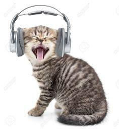 Érezd a ZENÉT! Merkury M-HL160 vezetékes sztereo fejhallgató! http://www.skyphone.hu/merkury-m-hl160-sztereo-fejhallgato-35mm