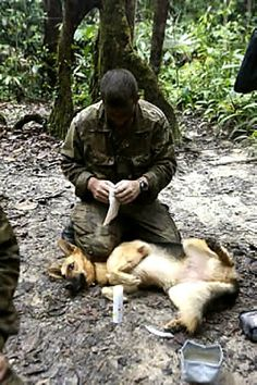 Military dog handlers carry emergency med kits to tend to wounded dogs. The dogs are trained to keep silent.
