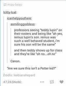 And then they remember that he's also Tonks' son, and that Remus was a Marauder. They start crying, and there are suddenly far more applications for retirement than expected.