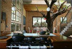 Árvore/Casa/Casas/Home