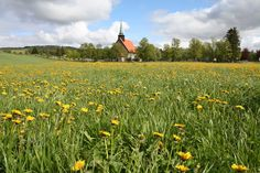 Stiklestad Kirke. Family stories state that my ancestors built the steeple on this church!