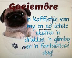 Afrikaanse Quotes, Goeie More, Good Morning Wishes, Words, Coffee, Kaffee, Horse, Cup Of Coffee