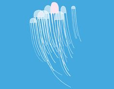 Jellyfish Graphic | Jellyfish Graphics Code | Jellyfish Comments & Pictures
