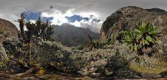 Рувензори - национальный парк в Уганде