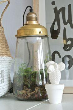 ZW&H.NL: Mijn augurkenpot-lamp met planten!