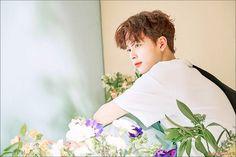Yoo Seonho Yoo Seonho, Lee Daehwi, Kim Jaehwan, Ha Sungwoon, Jinyoung, Bae, Handsome, Kpop, Celebrities