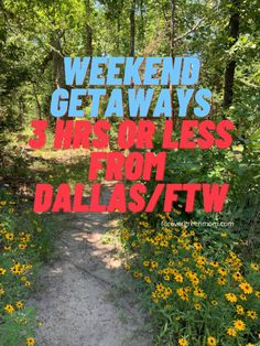 Quick Family Weekend Getaways Near DFW | Forever Green Mom Weekend Getaways From Dallas, Texas Getaways, Quick Weekend Getaways, Family Getaways, Family Road Trips, Weekend Trips, Family Travel, Broken Bow Cabins, Treehouse Cabins