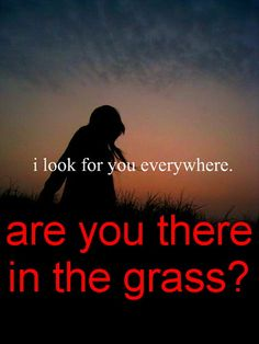 Are you in the grass? hipster edit