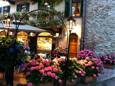 A cafe in Bergamo, Italy popular for both its cappuccino and flowers.