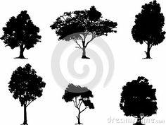Cedar Tree Silhouette Clip Art Cedar tree drawing - clipart ...