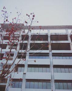 unfinish building #VSCOcam