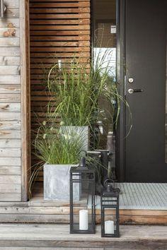 Prydgress tåler fint å stå i skyggen og er stilig ved inngangspartiet.