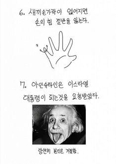 Haha Funny, Funny Jokes, Travel Activities, Trivia, Funny Photos, Einstein, Geek Stuff, Knowledge, Humor