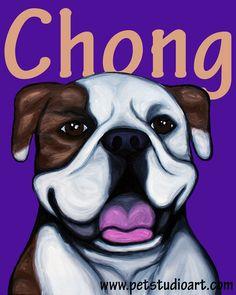 Pitbulls And Parolees Cheech And Chong Story