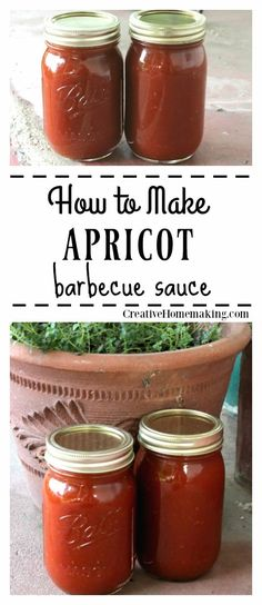 Recipe for the best apricot barbecue sauce. Easy recipe for beginning canners. This tangy barbecue sauce goes great with chicken and pork. Step by step canning instructions included. Barbecue Sauce Canning Recipe, Apricot Bbq Sauce Recipe, Barbecue Sauce Recipe Molasses, Best Barbecue Sauce, Apricot Recipes, Homemade Barbecue Sauce, Pork Barbecue, Bbq Ribs, Pulled Pork Recipes