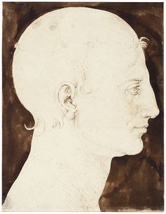Albrecht Dürer (1471–1528). Constructed Head of a Man in Profile, ca. 1512–13, Pen and brown ink and dark brown wash, 244 x 188 mm